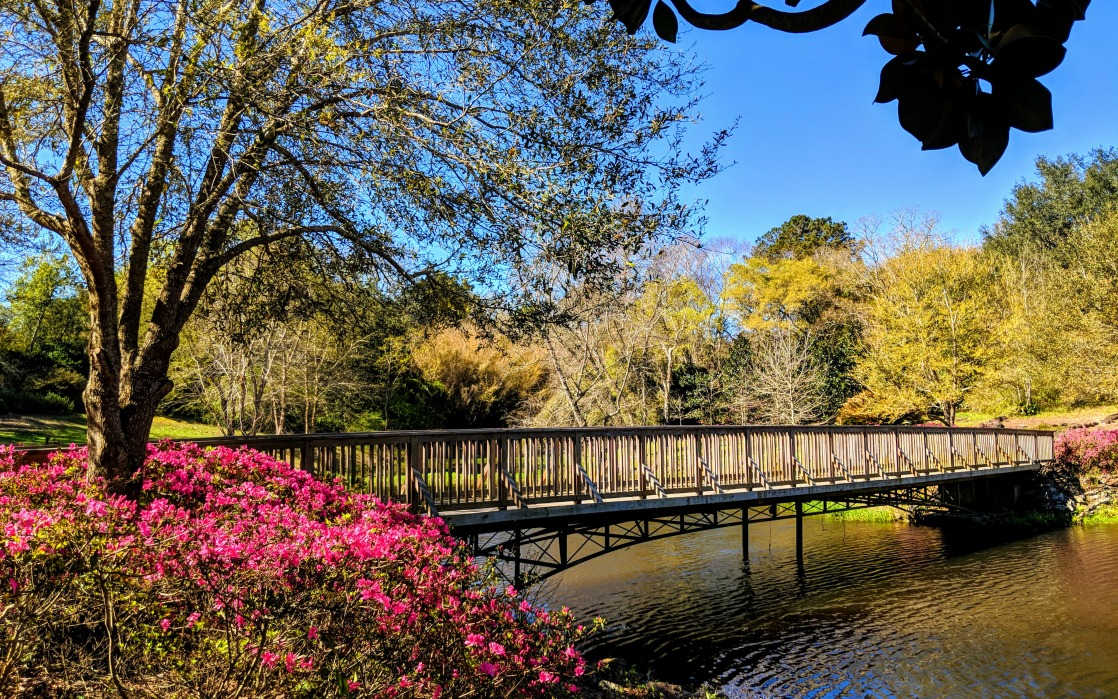 11 Best Things to Do in Mobile Alabama